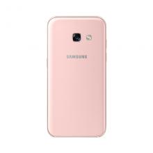 06_a3_back_pink_standard_online_l